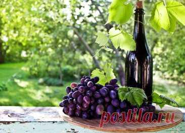 ༺🌸༻Кагор: полезные свойства, вред и рецепты лечения Полезные свойства кагора перекликаются со свойствами, присущими любому другому красному виноградному вину, но есть и особенности. А какая у напитка история!