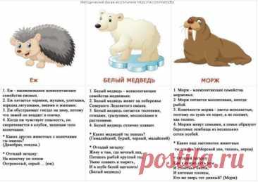 Факты о животных для детей.