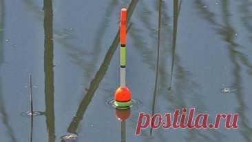Как легко ловить рыбу. 5 хитростей рыбалки на поплавочную удочку - Практическая астрономия. Всё о созвездиях