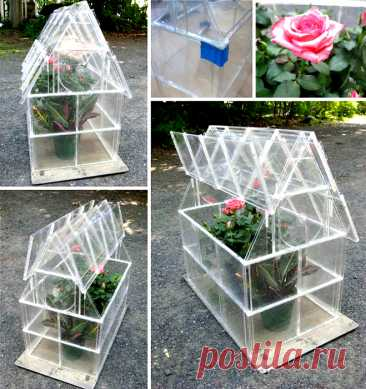 16 original greenhouses which it is possible to make with own hands from available materials