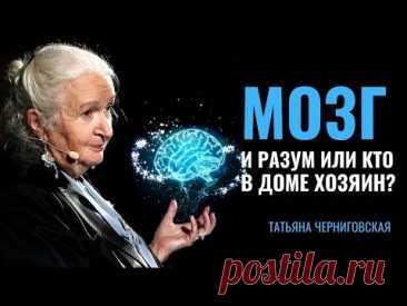Мозг и разум или кто в доме хозяин? Татьяна Черниговская