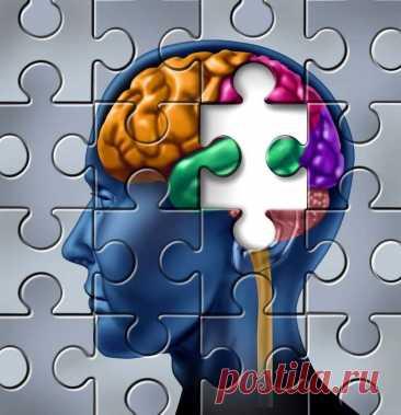 3 простых правила для эффективной работы мозга от нейрохирурга из Кремниевой долины