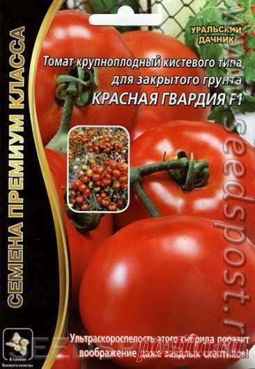 Томат Красная Гвардия F1, 6 шт. Семена премиум класса, купить в интернет магазине Seedspost.ru