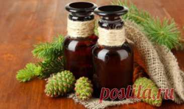 ༺🌸༻Польза и вред сосновых шишек, лечебные свойства, противопоказания, отзывы