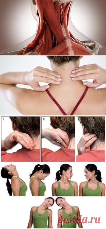 Показываю как самостоятельно снять перенапряжение мышц шеи и устранить боль. Это просто! - Кулинария, красота, лайфхаки