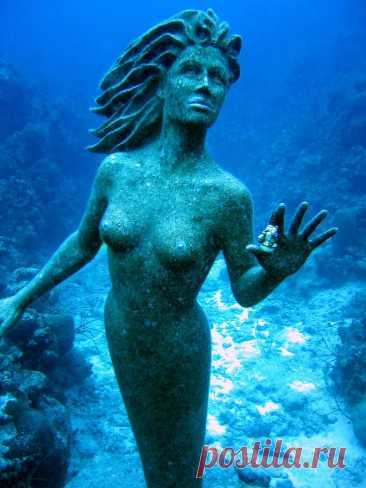 Подводные миры: фото путешествие