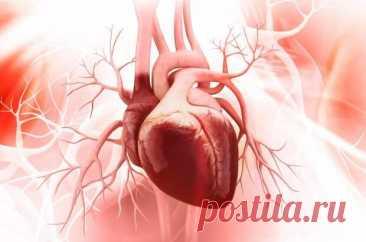 Как самостоятельно проверить здоровье и силу сердца (всего за 5 минут) - медиаплатформа МирТесен Сердце — уникальный орган. Он ни на минуту не прекращает свою работу от рождения человека и до самой его смерти. Если ваше сердце начало «барахлить», есть простой домашний способ проверить, как оно работает. Для этого не понадобятся никакие специальные приборы или приспособления.
