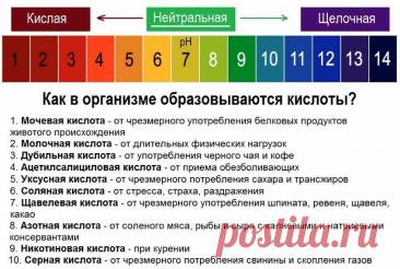 Значение КЩБ(кислотно-щелочного баланса) для человека. Как я привожу его в норму и в долгосрочную перспективу | Bereg1nya | Яндекс Дзен