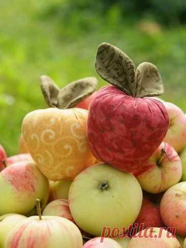 Fruit in the Tilde style