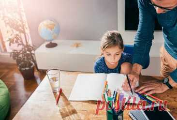 Где и как проходит домашнее обучение ребенка: кто может учиться на дому