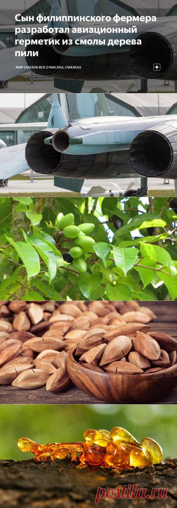 Сын филиппинского фермера разработал авиационный герметик из смолы дерева пили
