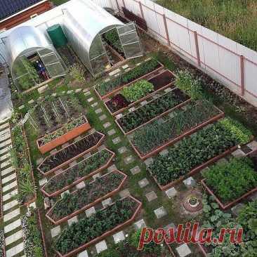 10 простых правил, которые облегчат вам труд в огороде. | Огород и сад. Полезные советы | Яндекс Дзен