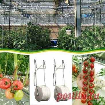 Набор из 2 садовых крючков для помидор, зажимы для поддержки овощей, овощей, огурцов, фруктов с веревкой 15 м/49 футов   Дом и сад   АлиЭкспресс