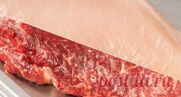 Красное и белое мясо – «Еда»