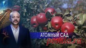 Атомный сад | Загадки человечества с Олегом Шишкиным (21.01.21).