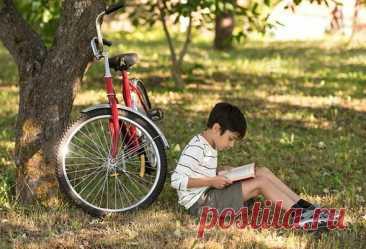 8 познавательных книг, которые увлекут любого ребёнка | Мел | Яндекс Дзен