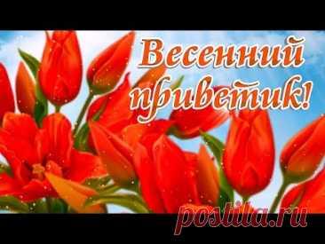 Весенний приветик. Видео открытка * МУЗыкальный подарОК