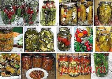 15 RECETAS FENOMENALES DE LOS PEPINOS.\u000a\u000a¡Conserva para no perder!\u000a\u000a1. Los pepinos en conserva con la grosella roja\u000a2. Los pepinos en la salsa aguda de tomate\u000a3. Los pepinos con las manzanas (marinado y poco salado).\u000a4. Los pepinillos salados para el invierno.\u000a5. Los pepinillos marinados con el grosellero\u000a6. Los pepinos en salmuera para el invierno.\u000a7. Los pepinos salado, esterilizado sin vinagre\u000a8. El salazón de los pepinos en los bancos – la más receta simple y sabrosa.\u000a9. Los pepinillos en vinagre y los tomates (la receta muy simple y sabrosa)\u000a10. Secreto re...