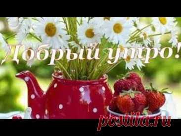 С Добрым Утром! / С Добрым Утром и Хорошим Днем!