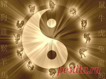 Китайский гороскоп на неделю с 27 сентября по 3 октября 2021 года   Астрору