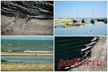 Озеро Туркана – самое большое озеро в пустыне Стоя на берегу озера Туркана (также известного как озеро Рудольф), можно подумать, что вы находитесь на берегу моря – волны накатывают на песчаный пляж, дует сильный ветер, а рыбацкие лодки, пришвартованные неподалеку, готовы отчалить. Однако это не море, а самое большое в мире постоянное озеро в пустыне, а также самое большое щелочное озеро, площадью более 6 тысяч квадратных километров. Местное население называет озеро «Нефрит...