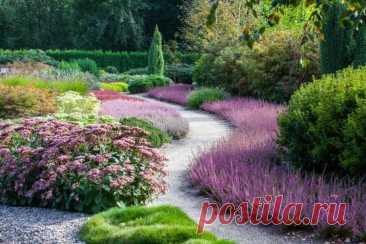 Почвопокровные растения для сада, которые вытесняют сорняки   На земле   Пульс Mail.ru Чтобы в саду и на участке всегда был порядок и вы не занимались бесконечной уборкой сорняков, можно высадить полезные растения: будет не только красиво,…