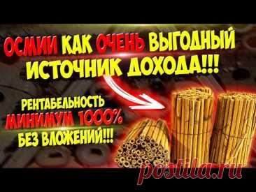 Прибыль с идеи до 100 000 рублей за мини сезон без копейки вложений ч.20