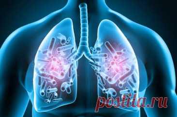Чем опасен микобактериоз и как его лечить - Народная медицина - медиаплатформа МирТесен В конце прошлого века микобактериоз называли «болезнью будущего» и рассматривали его как новую патологию, которая распространяется во всех странах мира, как бы вопреки усилиям, направленным на борьбу с туберкулезом. Сейчас микобактериоз превратился в серьезную реальность. Повсеместно отмечаются