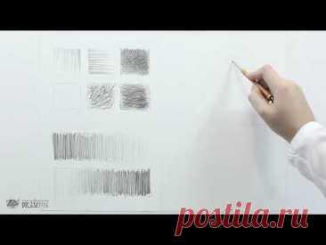 Рисунок карандашом для начинающих  Урок 1