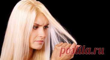 """Оттеночный шампунь для блондинок от желтизны: обзор средств, отзывы Желтизна - частый спутник непрофессионального окрашивания в цвет блонд. Ожидаемый результат """"эффекта блондинки"""" у некоторых девушек превращается в """"эффект цыпленка"""". Что остается д"""