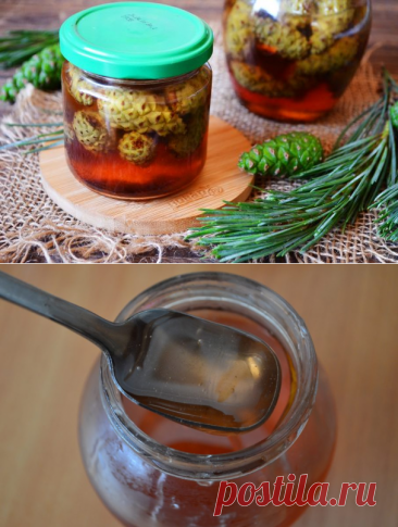 Jam from pine cones - the step-by-step recipe from a photo on Повар.ру