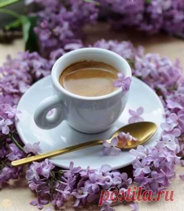Доброе утро!Пусть этот день будет наполнен радостью, позитивом и приятными известиями!