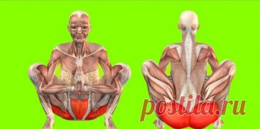 5 боеспособных упражнений Кегеля для мощного подтягивания мышц промежности. | Wolf Fit 🐺 | Яндекс Дзен