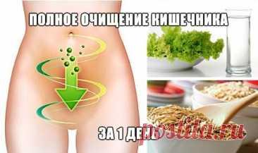 Full clarification of intestines