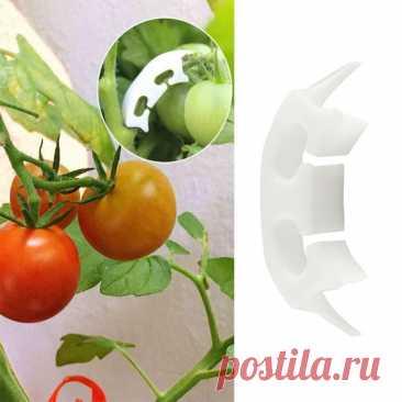 Многоразовые пластиковые зажимы для поддержки растений, саженцы винограда, привитые удерживающие садовые теплицы, овощи, помидоры, садовые зажимы   Дом и сад   АлиЭкспресс