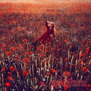 Маковое поле, Крым