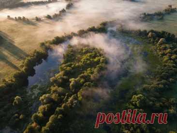 Раннее утро на реке Озерне, Подмосковье. Автор фото — aranid: nat-geo.ru/community/user/18989