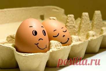 7 удивительно полезных свойств яиц - Образованная Сова