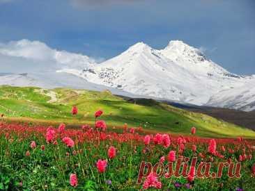 Двуглавая гора Эльбрус, расположенная на самой границе республик Кабардино-Балкария и Карачаево-Черкесия, чуть севернее Главного Кавказского хребта, — самая высокая точка России — по праву считается одним из семи чудес нашей страны.  Гора представляет собой конус потухшего вулкана, извергавшегося последний раз в начале нашей эры. Высота западной вершины Эльбруса — 5642 метра, восточной — 5621 метр, вершины разделены глубокой седловиной (5325 метров). По легенде, именно сюд...