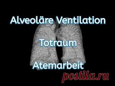 Was ist die Alveoläre Ventilation, der Totraum und die Atemarbeit? Weiter geht es in der Beatmungsreihe. Heute die alveoläre Ventilation, der Totraum und ein wenig zur Atemarbeit. Ich wünsche viel Spaß beim Lernen.Meine Empf...
