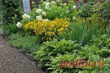 Как увеличить маленький сад: 5 дизайнерских приёмов | Сады и цветы | Яндекс Дзен