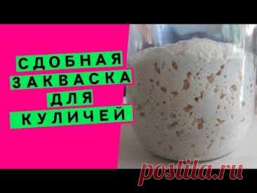 Закваска для куличей и сдобы: как превратить обычную хлебную закваску в специальную, СДОБНУЮ!