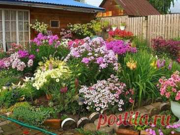 💐 Многолетники: цветущая клумба с весны до осени Сделать участок красивым – это не так уж и сложно. Главное – правильно подобрать и разместить многолетние растения в цветнике. При этом важно обратить внимание на высоту растений, только так клумба будет выглядеть красивой и гармоничной. ПОДБИРАЕМ ЦВЕТЫ ПО ВЫСОТЕ В том случае, если многолетняя цветущая клумба располагается у дома, теплицы или забора, принцип расположения растений достаточно прост. На переднем плане находятся низкие цветы, на з