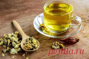 ༺🌸༻Чай из цветков хризантемы: полезные свойства и рецепты Чайная хризантема – удивительное растение, из которого можно приготовить вкусный напиток. Узнайте больше о полезных свойствах чая из цветков хризантемы.