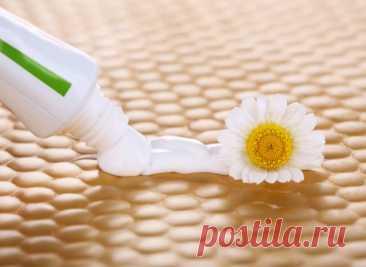 Зубная паста в саду и огороде – секреты применения популярного средства гигиены Зубная паста в свое время была популярна среди дачников. А теперь о... Читай дальше на сайте. Жми подробнее ➡