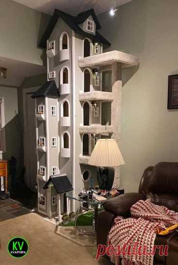 """Просто строил домик для любимого кота и """"психанул"""". Что получилось в итоге 😃👍   КVАРТИРА   Яндекс Дзен"""