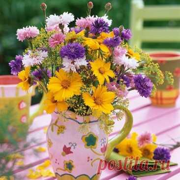 Хороший день начинается с хороших мыслей и приятных дел.  Пусть всё будет именно так! Доброе утро!.