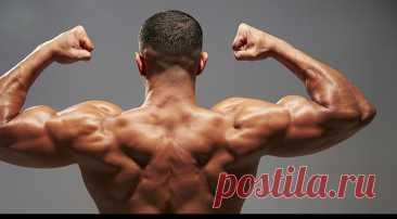 Комплекс упражнений для дельтовидных мышц – «Будь в форме»