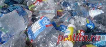 Это позволит сделать отходы источником безопасной и полезной еды.