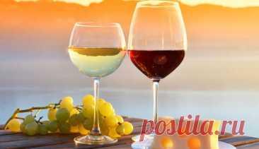Польза сухого вина — 5 поразительных фактов - Hi-News.ru